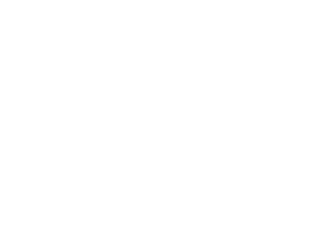 Maven Business Plan